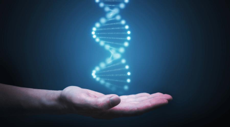 Найти любимый вид спорта поможет генетическое тестирование фото
